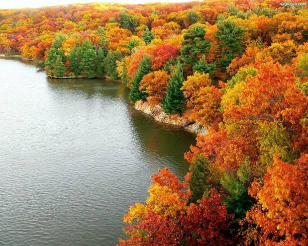 Photos Reveal The Full Spectrum Of Autumn's Colors