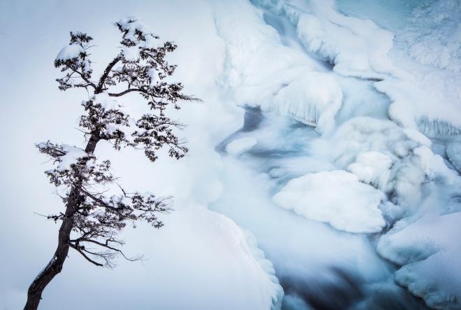 Bow Falls. Photo by Paul Zizka Photography.